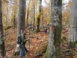 2017-10-21 Slovénie Cave Path et Skednena Jama